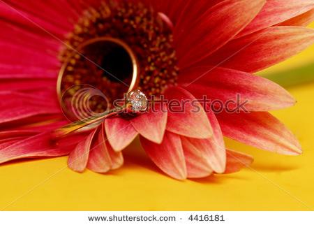 تزئین جای حلقه با گل طبیعی